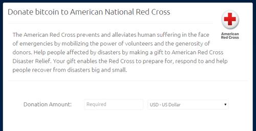 BitPayが開設した赤十字への寄付ページ