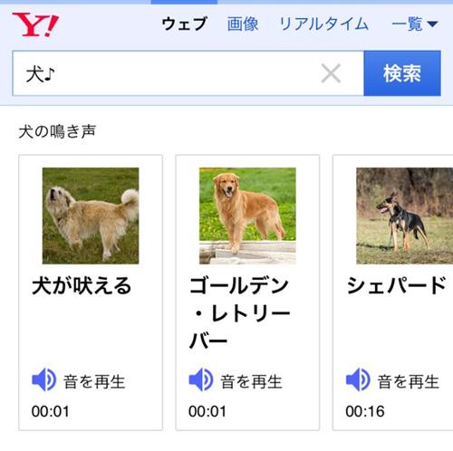 「♪検索」イメージ