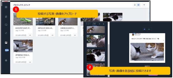 管理画面イメージ:メディア管理機能で複数のコンテンツの一括管理が可能